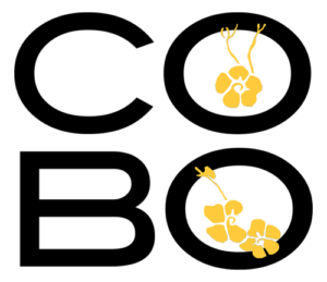 Cobo Sushi Bistro and Bar